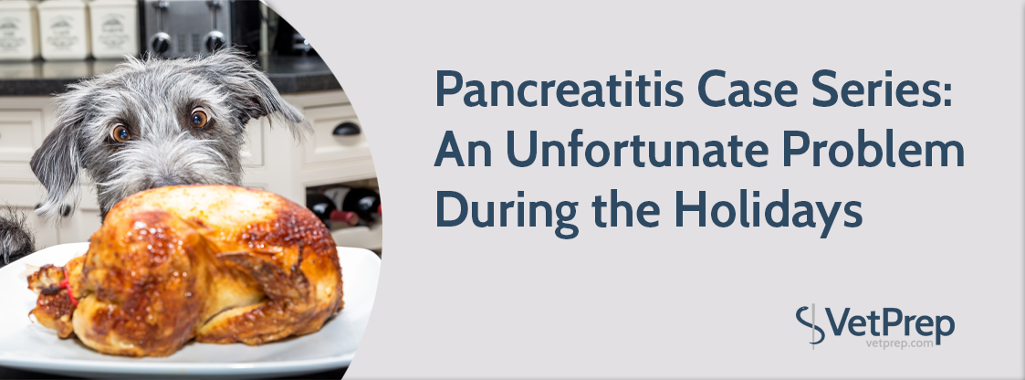 Pancreatitis-Case-Series--An-Unfortunate-Problem-During-the-Holidays