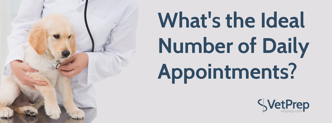 VPHEADER-What's-the-Ideal-Number-of-Daily-Appointments